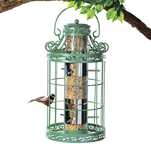 New Kingfisher Hanging Wild Bird Seed Feeder Squirrel Pest Resistant Metal Cage