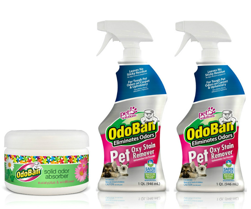 Odoban Pet Oxy Stain Remover 32oz Spray Bottle 2-Pack and Solid Odor Absorber
